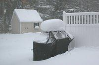 Blizzard of 2005 (January 22-23, 2005)